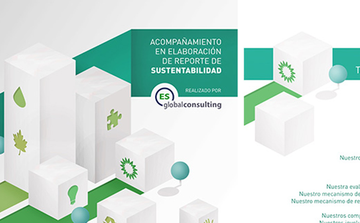 Globalconsulting brochure